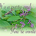 Party Invitation - General - American Beautyberry Shrub by Mother Nature