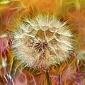 Pastel Dandelion Flare by Linda Tiepelman