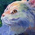 Pastel Persian by Sherry Shipley