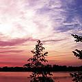 Pastel Pink Sunset by Ms Judi