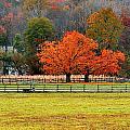 Pastoral Autumn by Kristin Elmquist