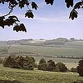 Pastoral Scene In Hampshire by Daniel Blatt