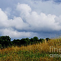 Pasture Field And Stormy Sky by Thomas R Fletcher