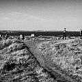 Path Around Calton Hill Looking Towards The Firth Of Forth And Triangulation Point Edinburgh Scotlan by Joe Fox