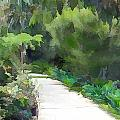 Path Into The Green by Elaine Plesser