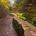 Path Through The Gorge by Cindy Haggerty