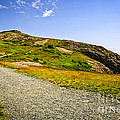 Path To Cabot Tower On Signal Hill by Elena Elisseeva