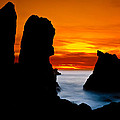 Patrick's Point Silhouette by Greg Nyquist