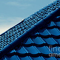Pattern Of Blue Roof Tiles by Antoni Halim