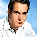 Paul Newman, Portrait Ca. 1950s by Everett