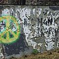 Peace 2012 #1 by Todd Sherlock