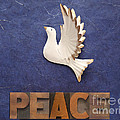 Peace Word With Dove by Ruby Hummersmith