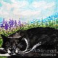 Peaceful Slumber by Elizabeth Robinette Tyndall
