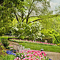 Peaceful Spring Park by Cheryl Davis