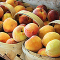 Peaches by Kristin Elmquist