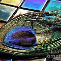 Peacock Feather On Tiles by Sarah Loft