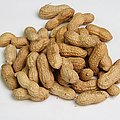 Peanuts by Photo Researchers, Inc.