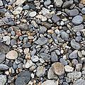 Pebble Beach Rocks, Maine by Ted Kinsman