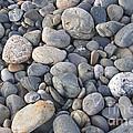 Pebbles by Milena Boeva