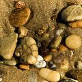Pebbles by Trish Tritz