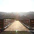 Pedestrian Bridge At Martinez Regional Shoreline Park In Martinez California . 7d10534 by Wingsdomain Art and Photography