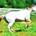 Pegasus Impression by Paul Ward