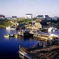 Peggys Cove, Nova Scotia by David Chapman