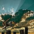Pelican Sky by Meirion Matthias