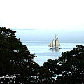 Penobscot Bay Sailing by Ruth Bodycott