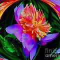 Peony Flower Energy by Smilin Eyes  Treasures
