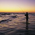 People Are Surf Fishing For Red Drum by Stephen Alvarez
