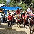 People On Horseback And On Foot Making The Climb To The Vaishno Devi Shrine In India by Ashish Agarwal