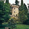 Pepperpot Tower At Powerscourt by Douglas Barnett