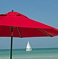 Perfect Beach Day by Elvira Butler