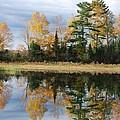 Perfect Reflection by Sharon Molinaro