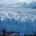 Perito Moreno Glacier, Tourist Overlook by Tui De Roy