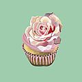 Petal Pink Dream by Shirley Radebach
