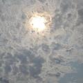 Peter Pan Clouds by Jennifer Zirpoli