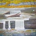Pete's Dam by Monika Shepherdson