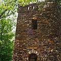 Petit Jean Water Tower 2 by Douglas Barnett