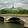 Petit Palace Paris France by Dave Mills