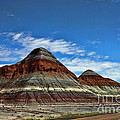 Petrified Forest National Park by Tommy Anderson