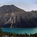 Peyto Lake - Canadian Rocky Mountains by Daniel Hagerman