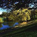 Phoenix Park, Dublin, Co Dublin, Ireland by The Irish Image Collection