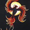 Phoenix by Tatjana Popovska