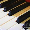 Piano Keys . V2 by Wingsdomain Art and Photography