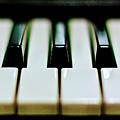 Piano Keys by Calvert Byam