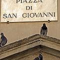 Piazza by La Dolce Vita