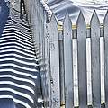 Picket Fence In Winter by Randall Nyhof