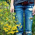 Picking Flowers by Kim Fearheiley